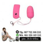 VIBRATOR EGG WIRELEES 094